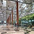 亞亞的樟宜機場 (36).jpg