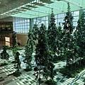 亞亞的樟宜機場 (51).jpg