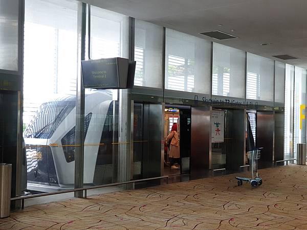 亞亞的樟宜機場 (59).jpg