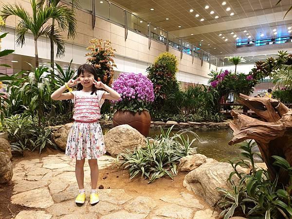亞亞的樟宜機場 (64).jpg