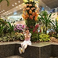亞亞的樟宜機場 (65).jpg