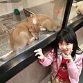 亞亞的環球狗狗夢 (3).jpg