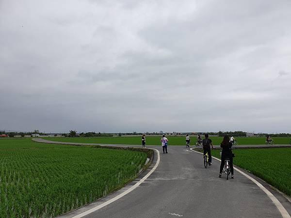 亞亞的伯朗大道單車行 (3).jpg