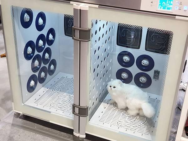 亞亞的上聯台北寵物用品博覽會 (3).jpg