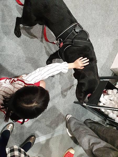 亞亞的上聯台北寵物用品博覽會 (6).jpg