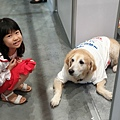 亞亞的上聯台北寵物用品博覽會 (12).jpg