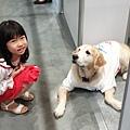 亞亞的上聯台北寵物用品博覽會 (13).jpg