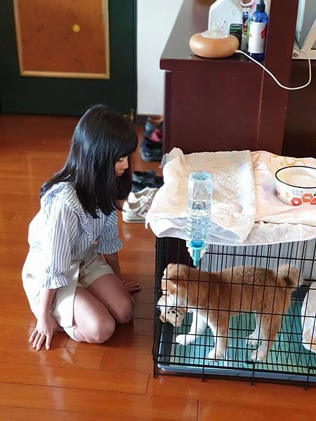 マル與寧妹的初見面 (19).jpg