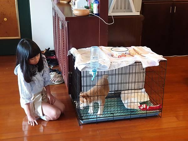 マル與寧妹的初見面 (18).jpg