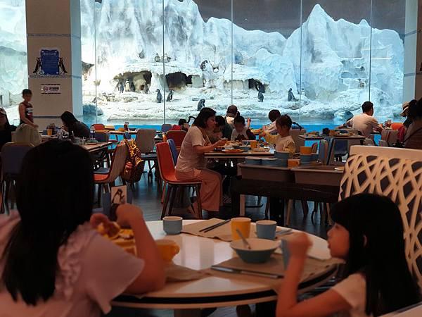 中國廣東省長隆企鵝酒店:帝企鵝自助餐廳 (1).jpg