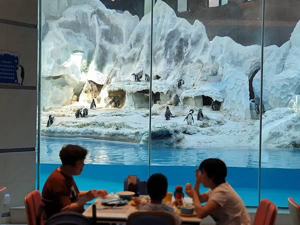 中國廣東省長隆企鵝酒店:帝企鵝自助餐廳 (6).jpg