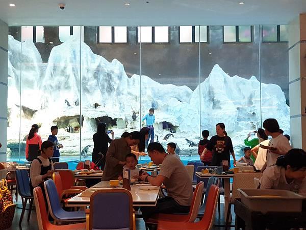 中國廣東省長隆企鵝酒店:帝企鵝自助餐廳 (63).jpg