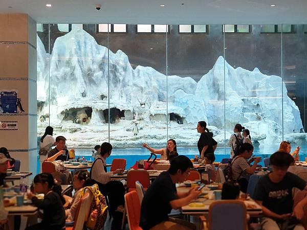 中國廣東省長隆企鵝酒店:帝企鵝自助餐廳 (60).jpg