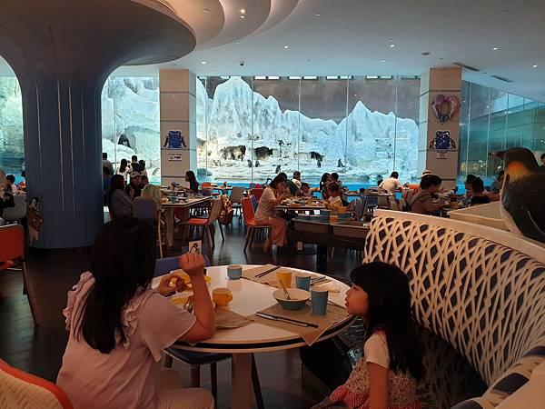 中國廣東省長隆企鵝酒店:帝企鵝自助餐廳 (86).jpg