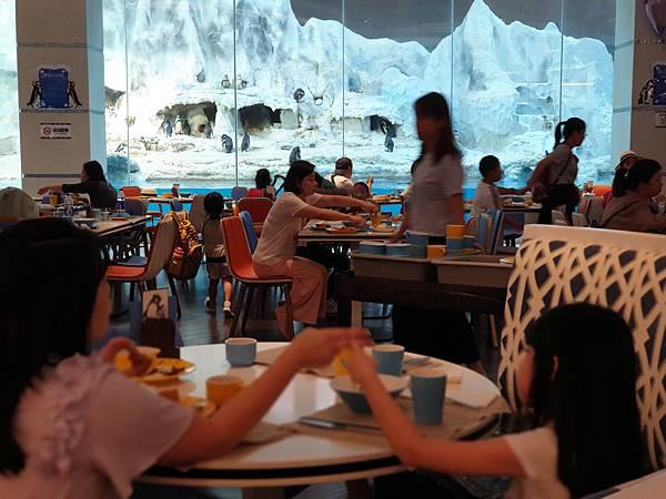 中國廣東省長隆企鵝酒店:帝企鵝自助餐廳 (87).jpg