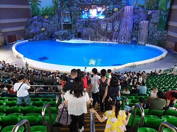 中國廣東省長隆海洋王國:海豚劇場 (23).jpg
