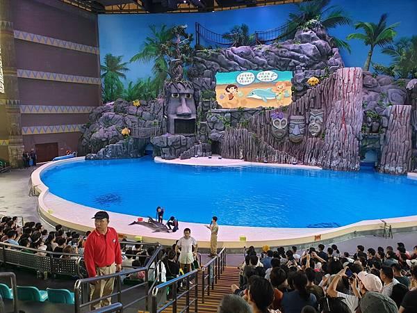 中國廣東省長隆海洋王國:海豚劇場 (27).jpg