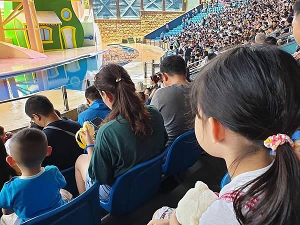 中國廣東省長隆海洋王國:海獅劇場 (6).jpg