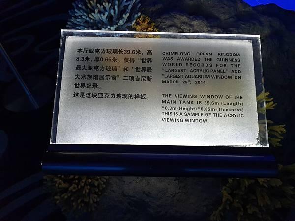 中國廣東省長隆海洋王國:鯨鯊館 (5).jpg