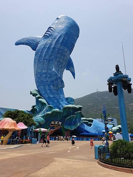 中國廣東省長隆海洋王國:鯨鯊館 (17).jpg