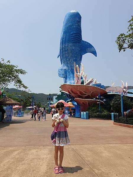 中國廣東省長隆海洋王國:鯨鯊館 (25).jpg