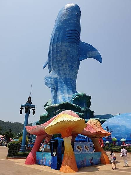 中國廣東省長隆海洋王國:鯨鯊館 (28).jpg