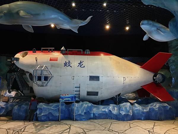中國廣東省長隆海洋王國:白鯨館 (13).jpg