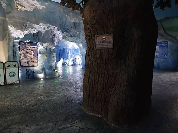 中國廣東省長隆海洋王國:北極熊館 (13).jpg
