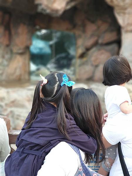 中國廣東省長隆海洋王國:北極熊館 (21).jpg