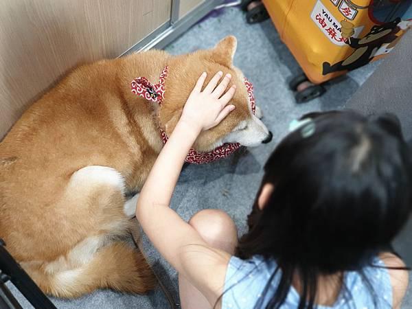 亞亞的寵物展交友 (4).jpg