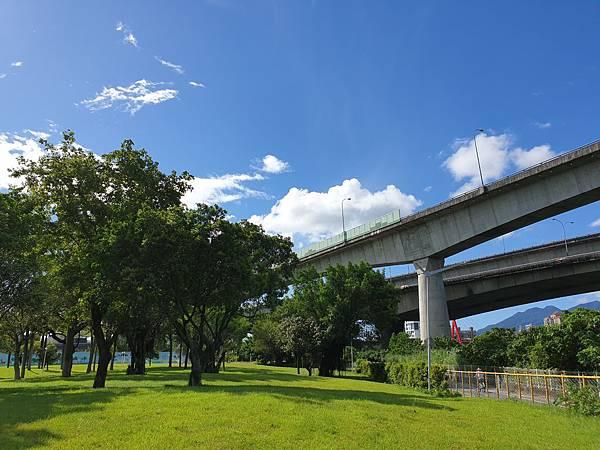 台北市圓山自然景觀公園 (13).jpg