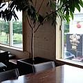 日本沖縄県D&DEPARTMENT OKINAWA by OKINAWA STANDARD:CAFE UNIZON (7).jpg