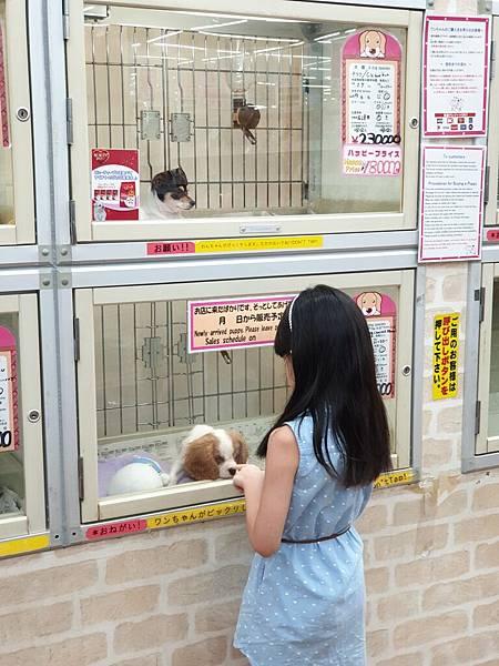 亞亞的美國村寵物拜訪 (27).jpg
