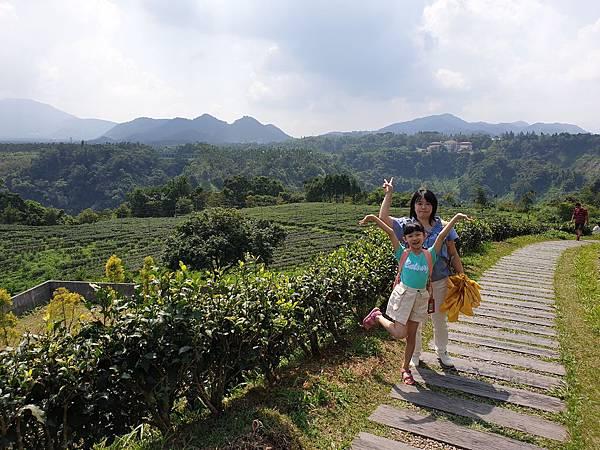 亞亞的茶園觀山 (4).jpg