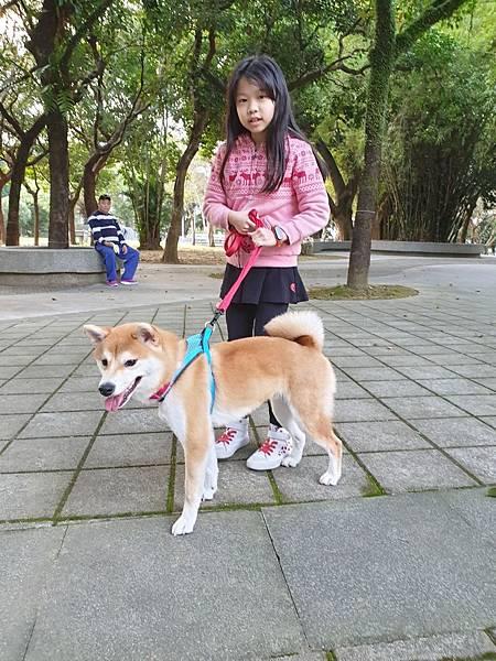 マル的農曆新年散步 (1).jpg