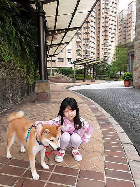 マル的中庭散步2 (8).jpg