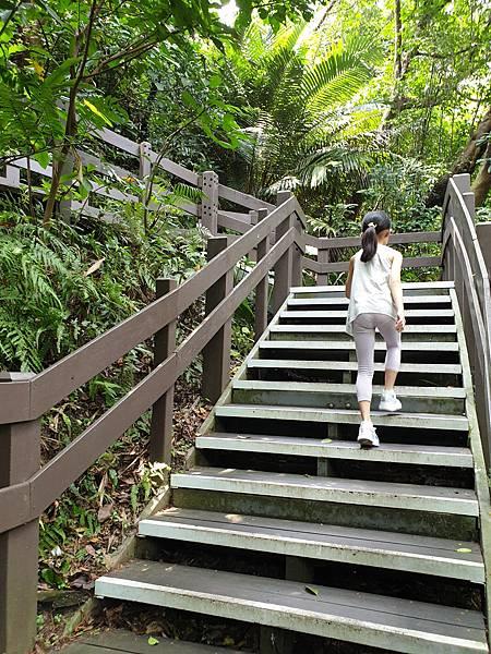 亞亞的登山紀行《虎山自然步道》 (5).jpg