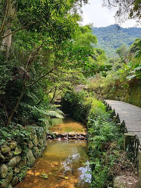 亞亞的登山紀行《虎山自然步道》 (4).jpg