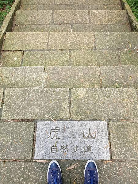 亞亞的登山紀行《虎山自然步道》 (21).jpg