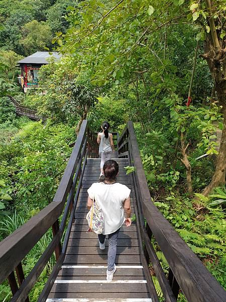 亞亞的登山紀行《虎山自然步道》 (23).jpg