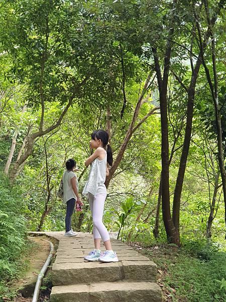 亞亞的登山紀行《虎山自然步道》 (29).jpg