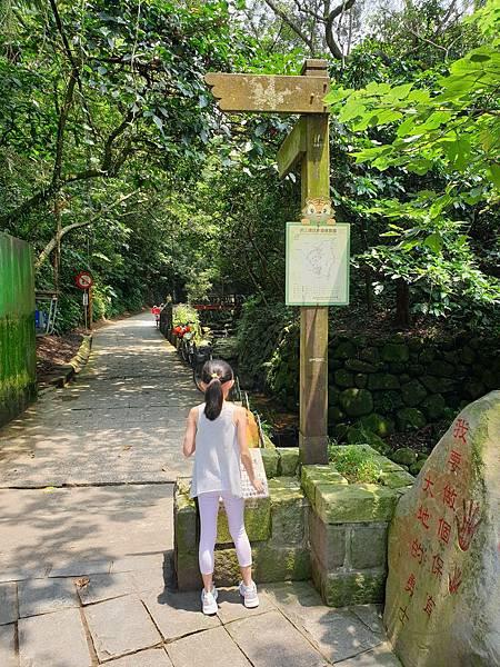 亞亞的登山紀行《虎山自然步道》 (35).jpg