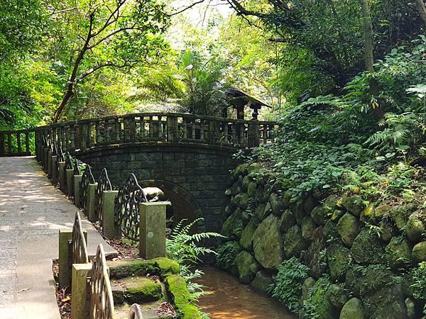 亞亞的登山紀行《虎山自然步道》 (38).jpg