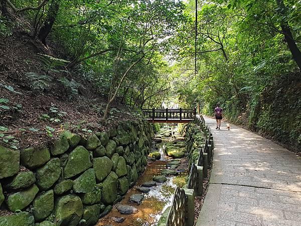 亞亞的登山紀行《虎山自然步道》 (37).jpg