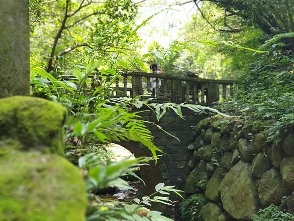 亞亞的登山紀行《虎山自然步道》 (43).jpg