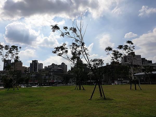 台北市景勤二號公園 (6).jpg