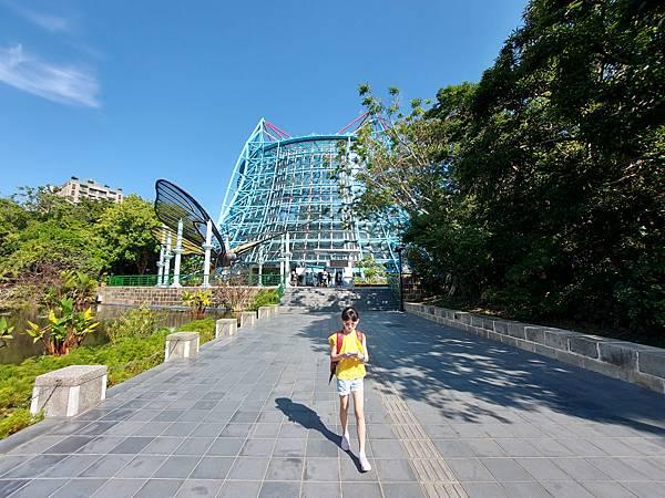 亞亞的熱帶雨林溫室 (1).jpg