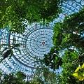 亞亞的熱帶雨林溫室 (11).jpg
