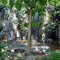 亞亞的熱帶雨林溫室 (14).jpg