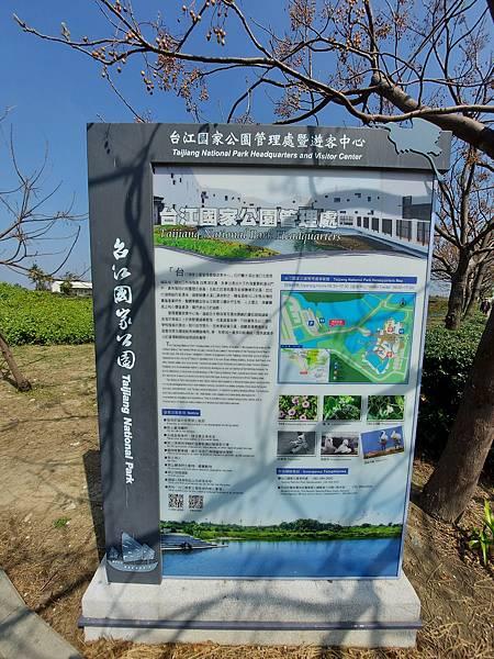 台南市台江國家公園 (5).jpg